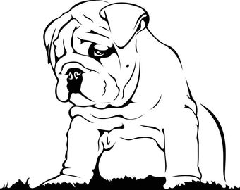 english bulldog graphics svg dxf eps png cdr ai pdf vector art clipart instant download digital