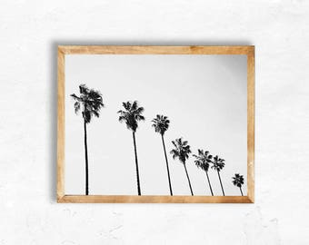 Black and White Palm Tree Print Instant Download Photography Bohemian vintage Clean California Style Print Wall Art los angeles apartment