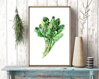 Herb print of my original watercolor, vegetable art, spinach artwork