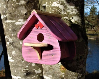 Birds house, nesting box colours