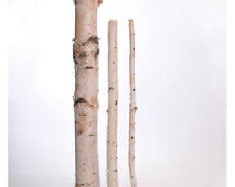 White Birch Poles | Dried Birch Pole | Birch | Dried Decor | Natural Decorations