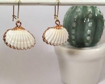 Stud Earrings small bronze Shell white