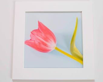 Flower Print.