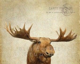 Moose Print, Wildlife Print, Moose with Antlers Wall Art, Nursery Art, Digital Download Printable File #bc134