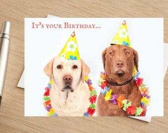 "Dog Birthday Greetings Card ""Lets Pawty"""