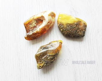 Baltic amber stones. Wholesale amber stones. Polished amber pieces. 3 units For jewelry making. SM20