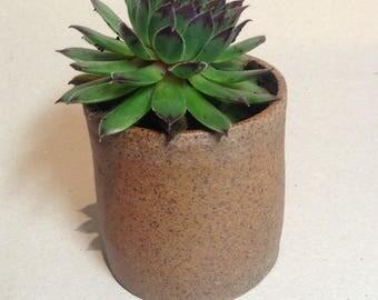 Stoneware desk pot, mini plant pot handmade