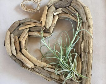Driftwood Heart and Air plants, Large