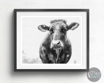 Cow Print, Cow Wall Art Decor, Black And White, Printable Art, Black And White Print, Animal Photography, Cow Printable, Farmhouse Decor