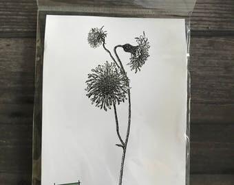 Impression Obsession Floral Cling Stamp