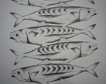 Stacked Mackerel