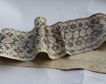 Genuine snake skin