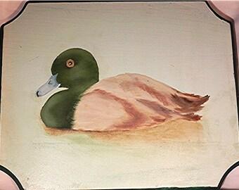 Blue Bill  - Duck
