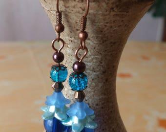 Duo blue and Brown earrings