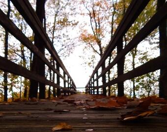 Blue Ridge Autumn Overlook