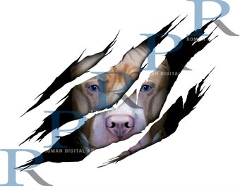 Pit bull Print, Pit bull Poster, Pit bull gift, Dog print, Dog gift, 3D, 3D Wall Art, Wall Art, Dog Lover, Print for t shirt, Pit bull png