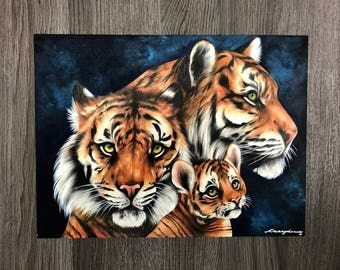 "Tigers, 9""x12"" Colored Pencil Illustration, ""Generation"""