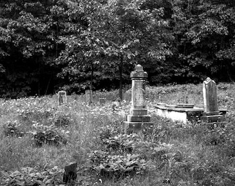 HogeyeCemetery where the cows can't reach.
