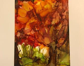 Fall Foliage on Fire