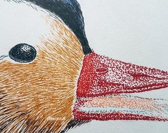 Duck, Daffy, ink, ink 21x21cm