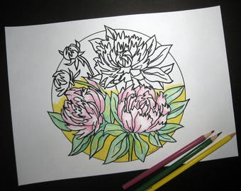 Peony  Coloring Page, Adult Coloring Page, Hand-Drawn, Art Therapy, Antistress, Coloring for Relaxation , Instant Digital Download, Flower