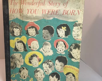 Quirky, Informative? 'The Wonderful Story of How you were born' Antique Children's Book 1959