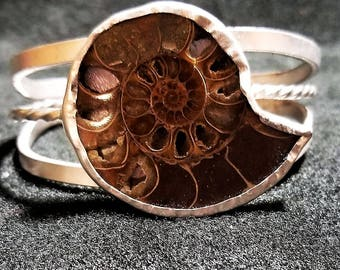 Ammonite Shell Braclet