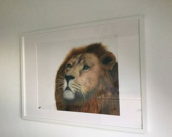 Lion Original Drawing