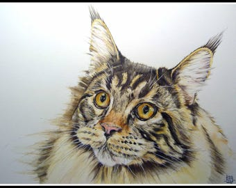 Watercolor 30s-40s Maine Coon cat