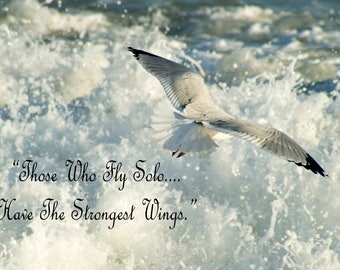 Seagull in flight with quote
