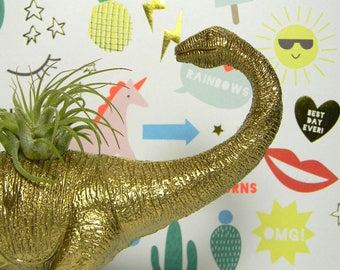 Dinosaur Planter Unique Gift Great for Birthday Parties or Office Desk Decor