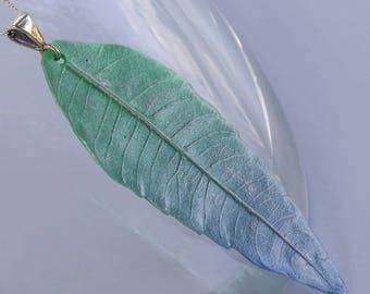 Lemon Verbena Ombre