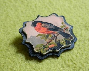 Bird brooch - Bullseye brooch - bird jewelry - Color print -  victorian graphic - Handmade brooch