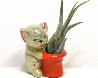 Vintage Funny Bulldog Dog Figurine/ Tiny Vase or Air Plant Holder/ Ceramic Lusterware MIJ