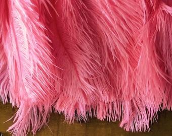 DELICATA OSTRICH PLUMES  , Flamingo Pink  / 2027
