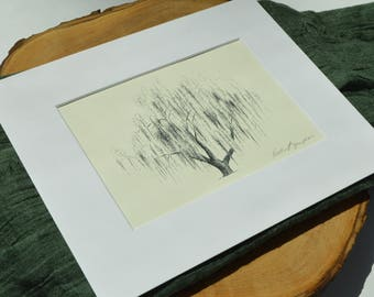Weeping Willow Tree Ink Drawing Aurora No 2 in Natural - Signed Fine Art Print by Heather L. Young