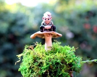 Save25% Gnome on a mushroom-Moss & Lichen centerpiece-Preserved moss no water needed.