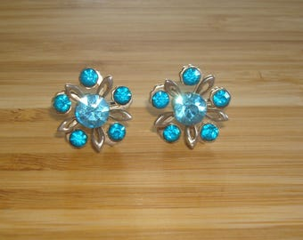 Floral Aquamarine/Icy Blue Rhinestones Screw Back Earrings