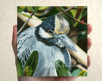NEW! Yellow-crowned Night Heron original oil painting miniature
