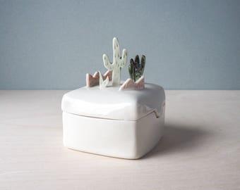 sonoran desert box