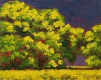 Daily Painting - Stormy Sky - Original Painting