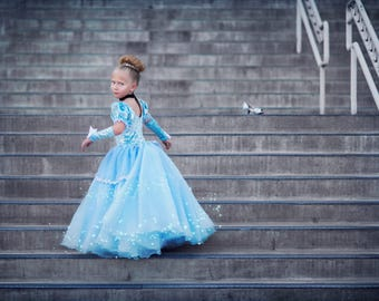 Size 2t Cinderella ballgown