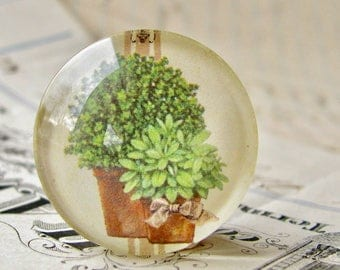 Herbal Greenery, herbs from our Vintage Kitchen collection of handmade glass oval cabochons, 25mm circle, food, cooking, bottle cap 1 inch