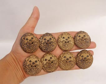 Seven Large Buttons Of Hedgehog And The Eighth Is A Gift