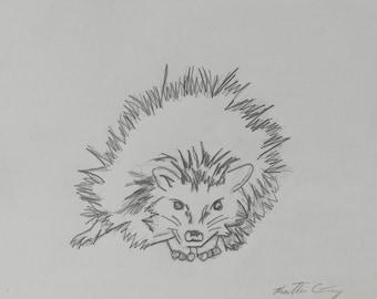 Hedgehog - Original Pencil Drawing