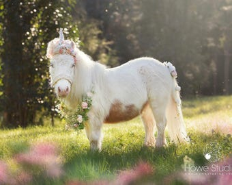 Blush gold white unicorn horn and floral necklace for mini horse pony accessory photography prop