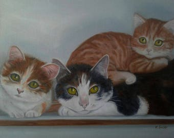 """3 Cats on A shelf Cat Oil Painting 3 Rescue Cats Orange Tabby Cat Black & White and Calico Cat Cat Lovers 16"""" X 12"""" Canvas Karen Snider"""