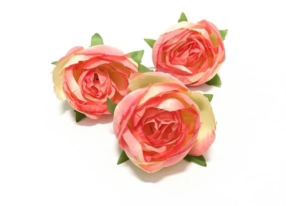 Rosa polyantha - Wikipedia, the free encyclopedia