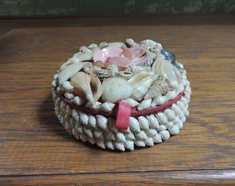 Vintage Shell Trinket Box / Jewelry Box / Jewelry Case