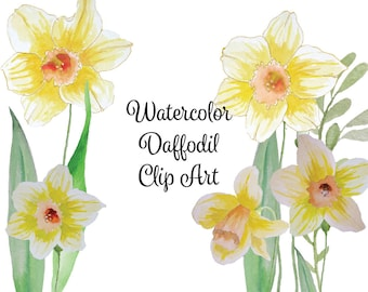 Watercolor Daffodil Clip Art High Resolution Graphic Digital Scrapbooking Yellow Floral Clipart